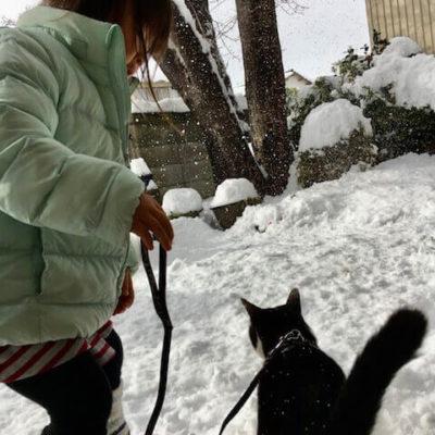 ★雪遊び★